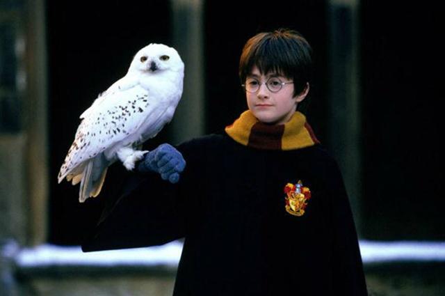 Кадры из фильмов о Гарри Поттере