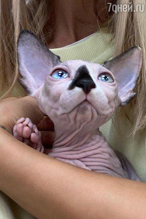 Мария Горбань с котом